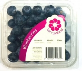 BLUEBERRIES SA