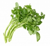 Watercress Bunched Indonesia