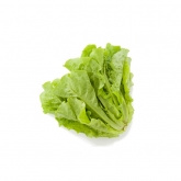 Red Lettuce Korea 170g